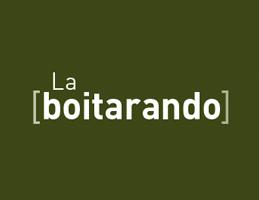 Boitarando_TDM_MINI_REF14