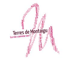 M_Montaigu