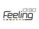 Logo Feeling 13.90