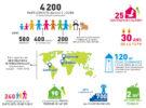 Infographie Bilan BIRDFAIR